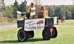 Gunter Farms